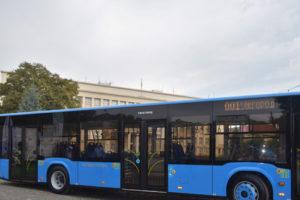 Рух автобусів в Ужгороді на вихідні (графік)