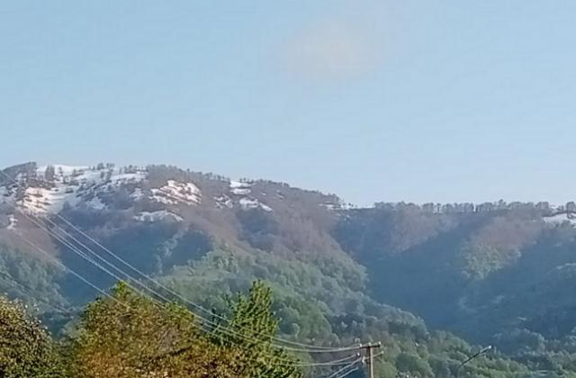 У високогір'ях Тячівщини випав травневий сніг (ФОТО)