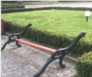 Біля Закарпатської ОДА знищили лавиці (відео)