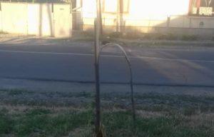 У Мукачеві вандали поламали дерева на алеї (фото)