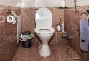 657 грн. 17 копійок виділив Кабмін на облаштування туалетів в школах Закарпаття