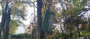 Вандалізм в Ужгороді! Виривають лавки та закидають на дерева (фото)