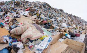 У Берегові екологічна проблема через сміття назріває екологічна катастрофа (відео)