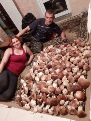 26 кг білих грибів зібрала закарпатка (ФОТО)