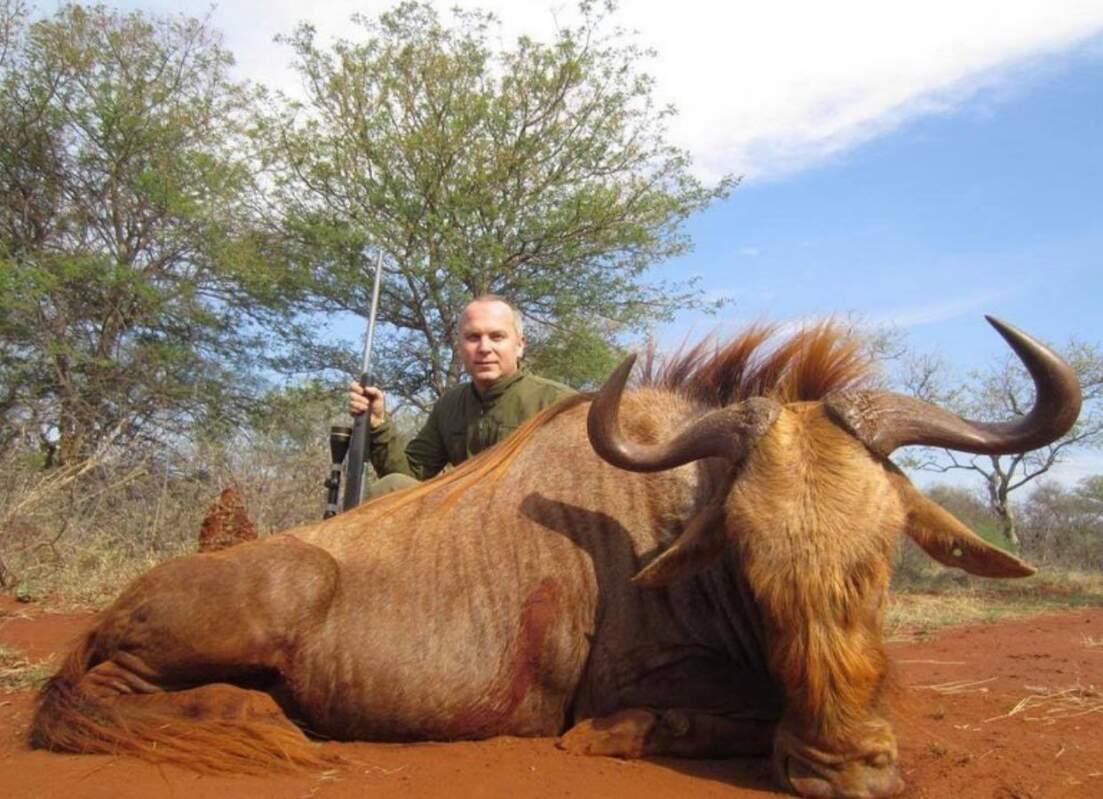 Нестор Шуфрич святкує Новий Рік убивством тварин (фото)