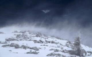 ДСНС попереджає про погіршення погоди в Карпатах