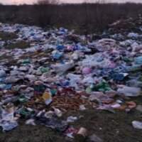 У Виноградівському районі люди влаштували сміттєзвалище просто серед поля