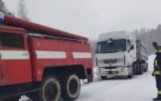 Наслідки негоди на Закарпатті: повалені дерева та знеструмлені населені пункти