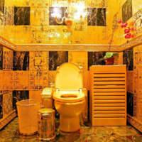В одній із закарпатських шкіл планують зробити туалети за 60 тисяч доларів (Документ)