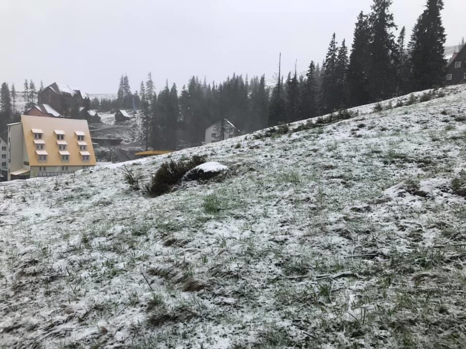 Завтра літо, а Драгобрат засипає снігом (фото,відео)