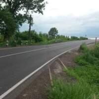 Губернатор Закарпаття обурився на недбальство іршавських дорожників