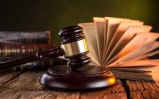 Суд виніс вирок чоловіку з вини якого жінка-полісмен втратила дитину