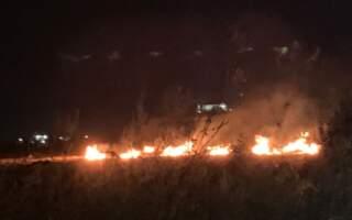 Відео масштабної пожежі під Мукачевом