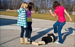 На Виноградівщині підлітки побили 12-річну дівчинку