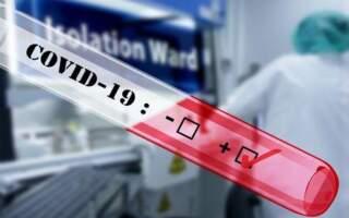 Нардеп із Закарпаття захворів на коронавірус