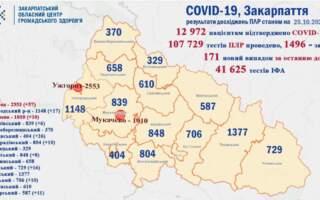 Закарпаття +171 випадок. Ужгород та Ужгородський район – антилідери