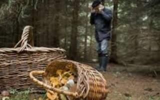 У лісах Рахівщини знайшли мертвого чоловіка
