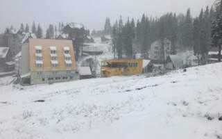 Фото/Відео як засипає снігом гори Закарпаття
