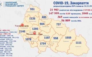 Ужгород, Тячівщина, Перечинщина мають найбільший показник діагностованих випадків Ковід (Статистика по районах)
