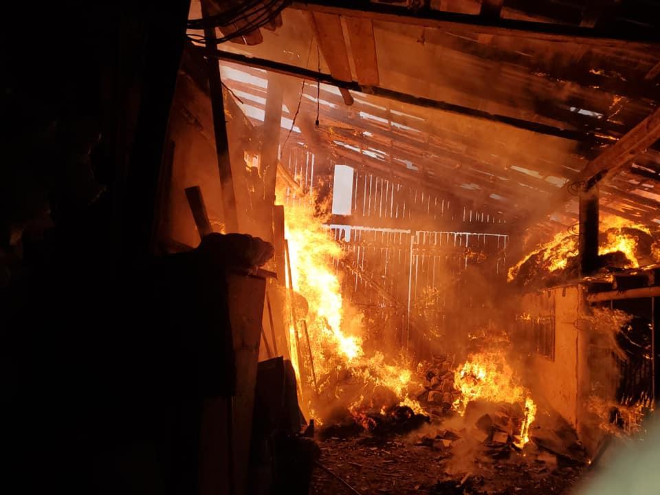 З'явились Фото масштабної пожежі на Мукачівщині