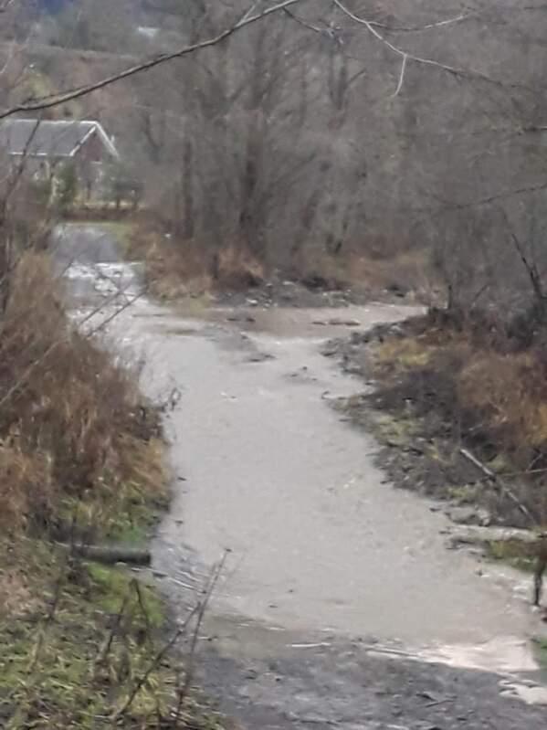 Вулиці села повністю підтопило: У мережі показали підтоплене село Закарпатті (ФОТО)