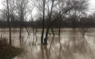 Фото! Уж вже затоплює парки в Ужгороді
