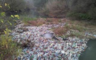 Річка Тиса забруднена важкими металами, шлейф рухається до території України , – Держекоінспекція