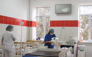 Малярію на Закарпаття привезла мати з дитиною з Конго (ВІДЕО)