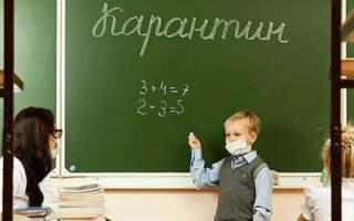 Від сьогодні і до 15 березня на Хустщині на карантин закрилися всі навчальні заклади
