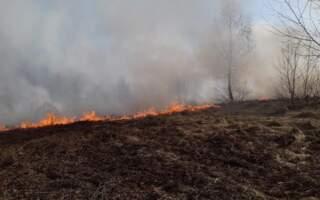 """""""Хто має можливість ідіть на допомогу, там вже багато людей"""", – На Закарпатті масштабна пожежа (Фото, Відео)"""