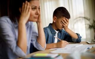 """Батьки вимагають грошей за навчання дітей вдома: 35% окладу вчителя на дистанційці: """"Від тижня навчання вдома"""""""