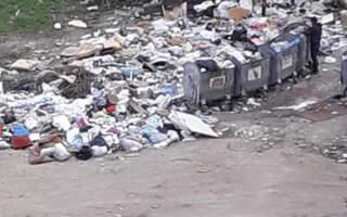 """""""Це безкінечно, ось такі свалки ростуть постійно, кому тільки не лінь, всі привозять і приносять сміття"""", – обласний центр тоне у смітті (ФОТО)"""