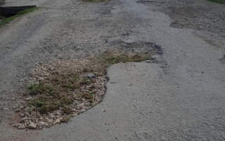 """""""Дожилися, коли дороги обл.значення ремонтуються травою. Просто жах!!!"""", – на Закарпатті """"освоюють"""" нові технології латання доріг (ФОТО)"""