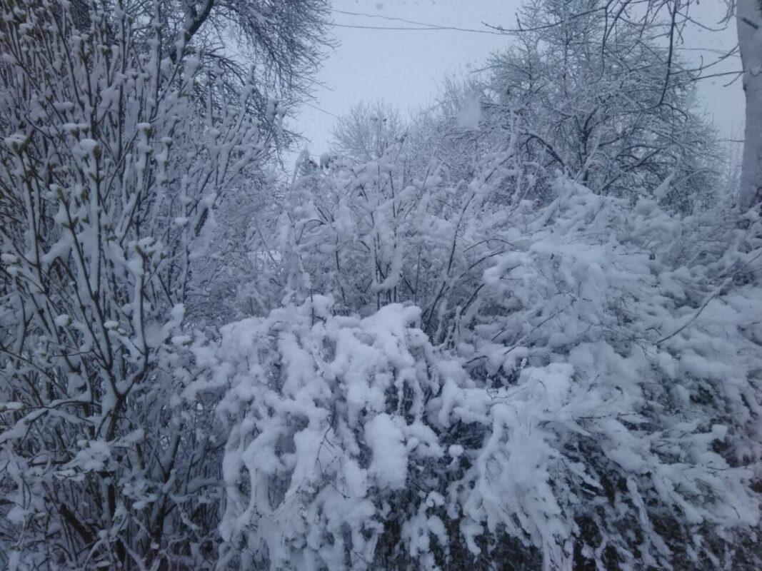 """""""Вчора посадила три рядки ранньої картоплі, а днесь зима ся вернула"""", - Закарпаття у сніговому полоні (ФОТО)"""
