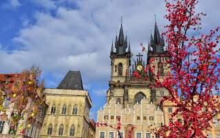 """""""Люди не раби"""", – Закарпатець у Чехії оголосив протест через невиплату зарплати (Подробиці у ВІДЕО)"""