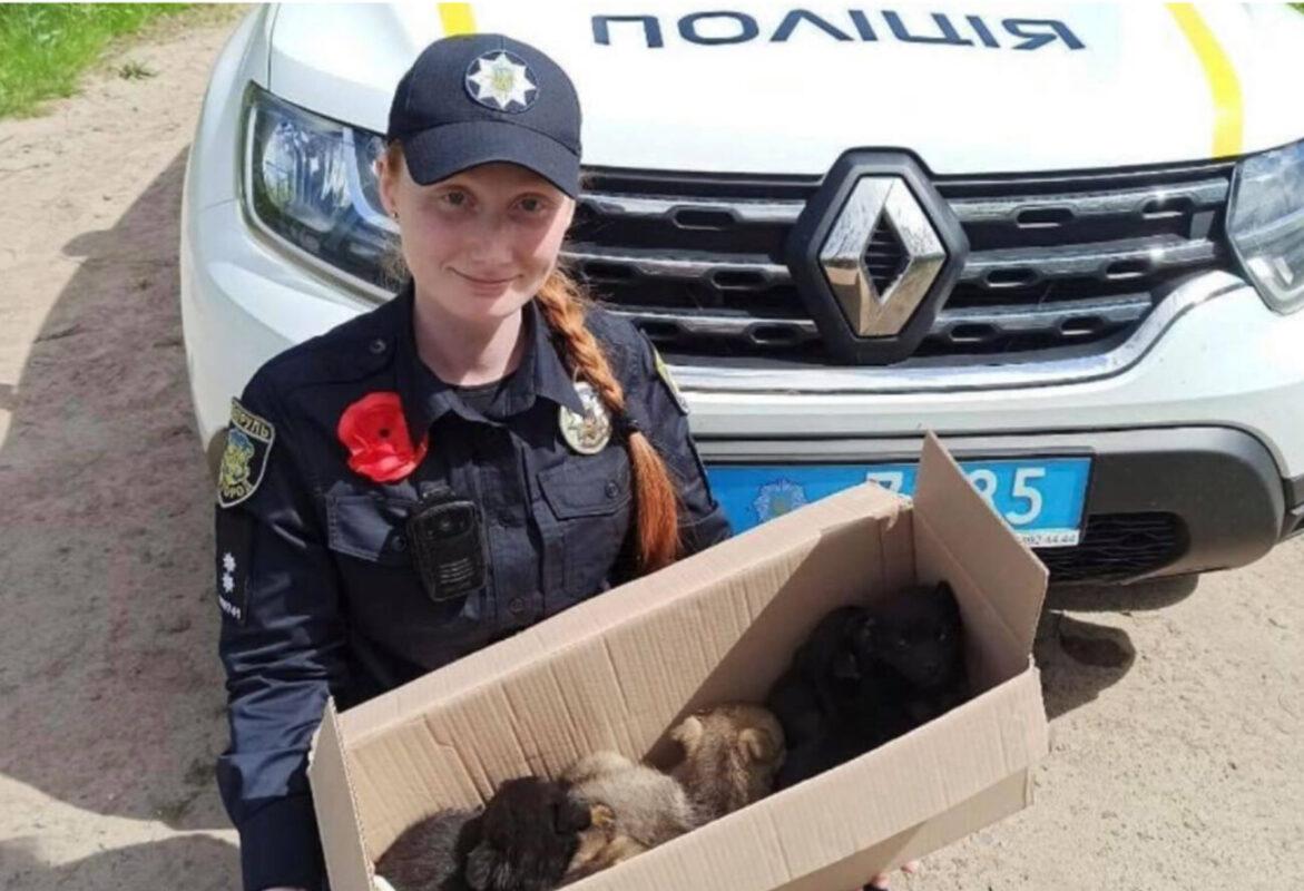 Зворушлива історія порятунку: Ужгородські поліцейські знайшли викинутих на вірну смерть цуценят (ФОТО)