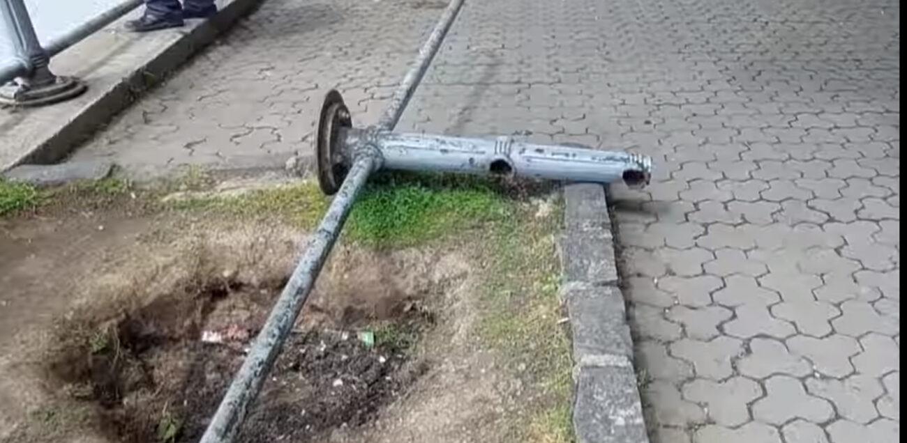 В Ужгороді в центрі міста впало дерево та пошкодило огорожу (ВІДЕО)