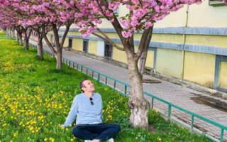 """""""Десь на набережній в Мукачево… там де душу виймає сакура"""", – Святослав Вакарчук показав неймовірні пейзажі Мукачева"""