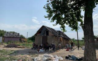 Ромсько-грецька родина виховує в Берегові 56 онуків та сортує в тиждень 1 т сміття
