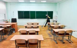 Озвучили коли навчальні заклади Закарпаття  можуть перейти на дистанційне або змішане навчання