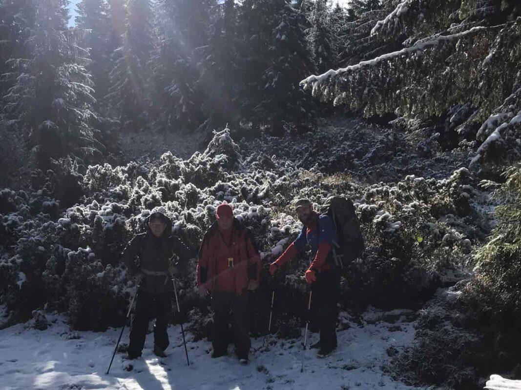 Озвучили причини чому призупинили пошуки зниклої туристки у горах на Закарпатті