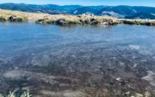 Замерзло озеро: у Карпатах б'ють морози (ФОТО)